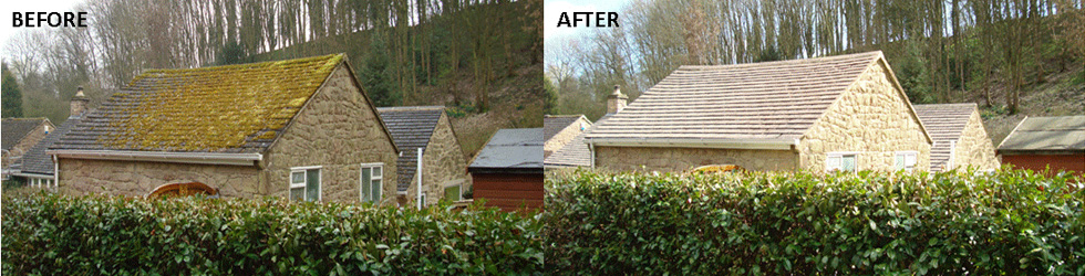 Surrey-Roof-and-Gutter-Clean-Moss-Removal-Slider1