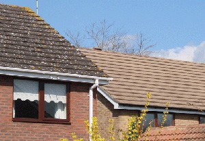 Roof cleaners Surrey