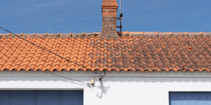 Roof cleaning Croydon